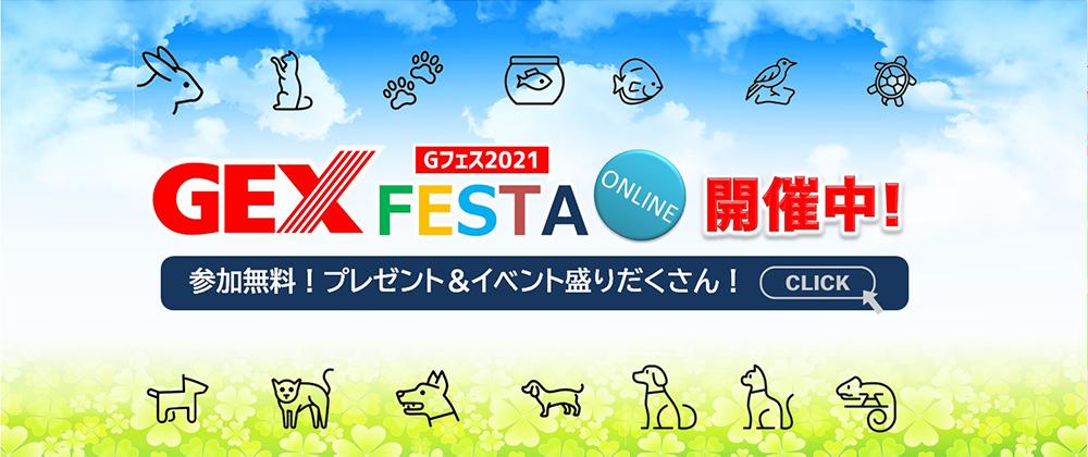 GEX FESTA