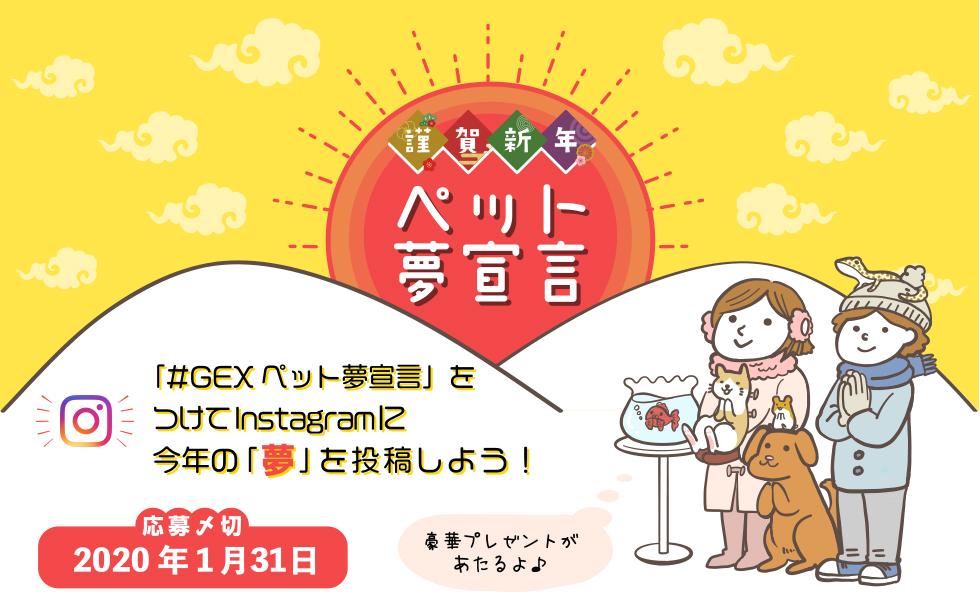 2020年お正月キャンペーン!「GEXペット夢宣言」