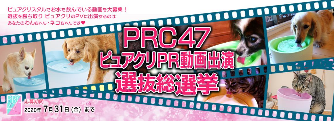 PRC47 ピュアクリPR動画出演 選抜総選挙