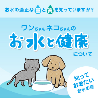 お水と健康について