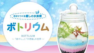 「お魚のワンルームマンション」ボトリウムが新登場!