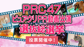/ca/campaigns/prc47/