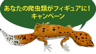 あなたの爬虫類がフィギュアに!キャンペーン