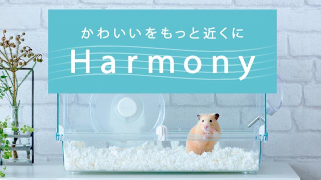かわいいをもっと近くに Harmony
