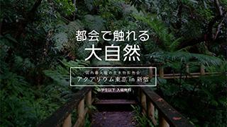 アクアリウム東京in新宿