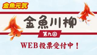 金魚川柳 第九回 WEB投票受付中!