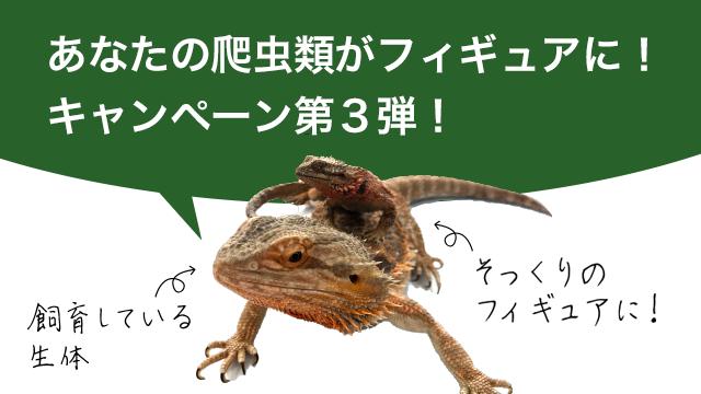 あなたの爬虫類がフィギュアに!キャンペーン 第3弾!