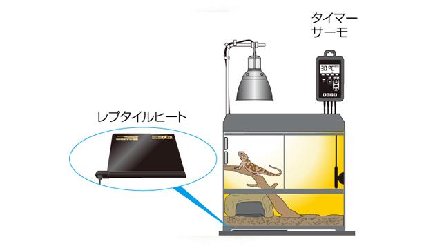 フトアゴヒゲトカゲの飼い方〈保温〉