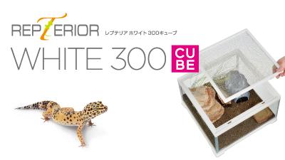 レプテリアホワイト300CUBE