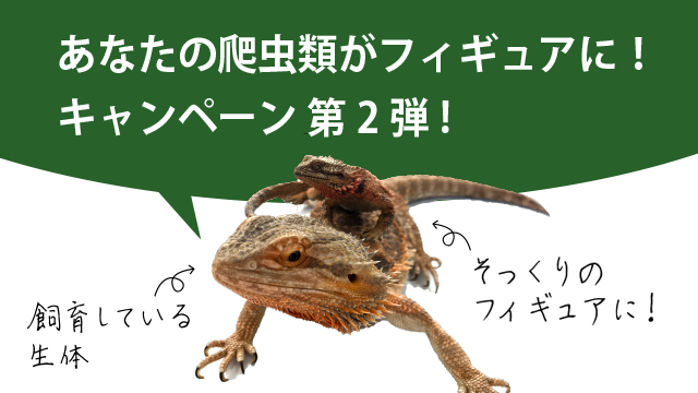 あなたの爬虫類がフィギュアに!キャンペーン 第2弾