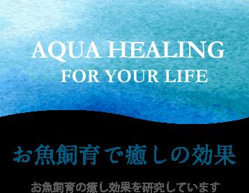 AQUA HEALING FOR YOUR LIFE お魚飼育で癒しの効果 お魚飼育の癒し効果を研究しています