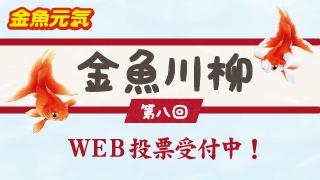 金魚川柳 第八回 WEB投票受付中