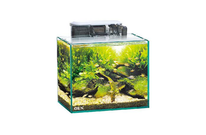 小型水槽のレイアウト例
