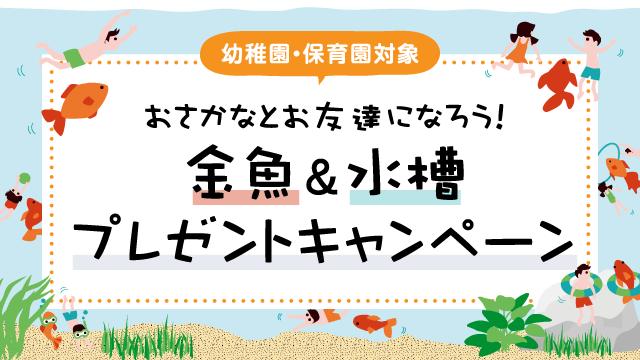 【幼稚園・保育園対象】おさかなとお友達になろう!金魚&水槽プレゼントキャンペーン