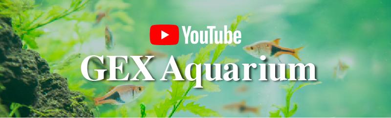 YOUTUBEチャンネル GEX Aquarium